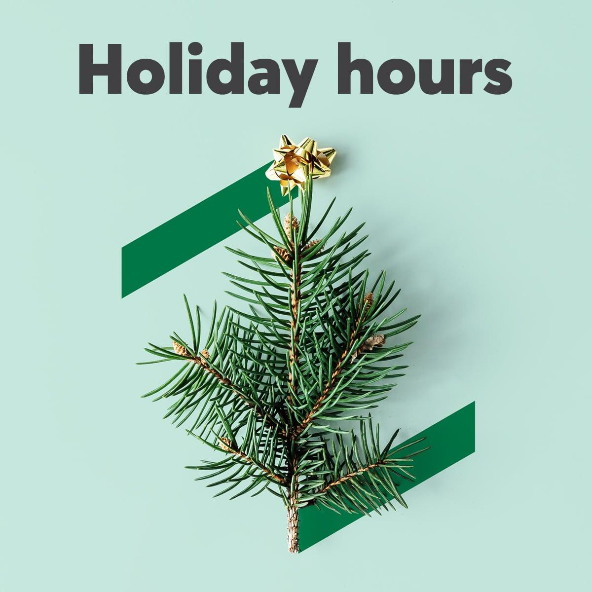 Holiday hours - Lịch nghỉ lễ Tết năm 2019